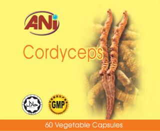 ANI Cordyceps